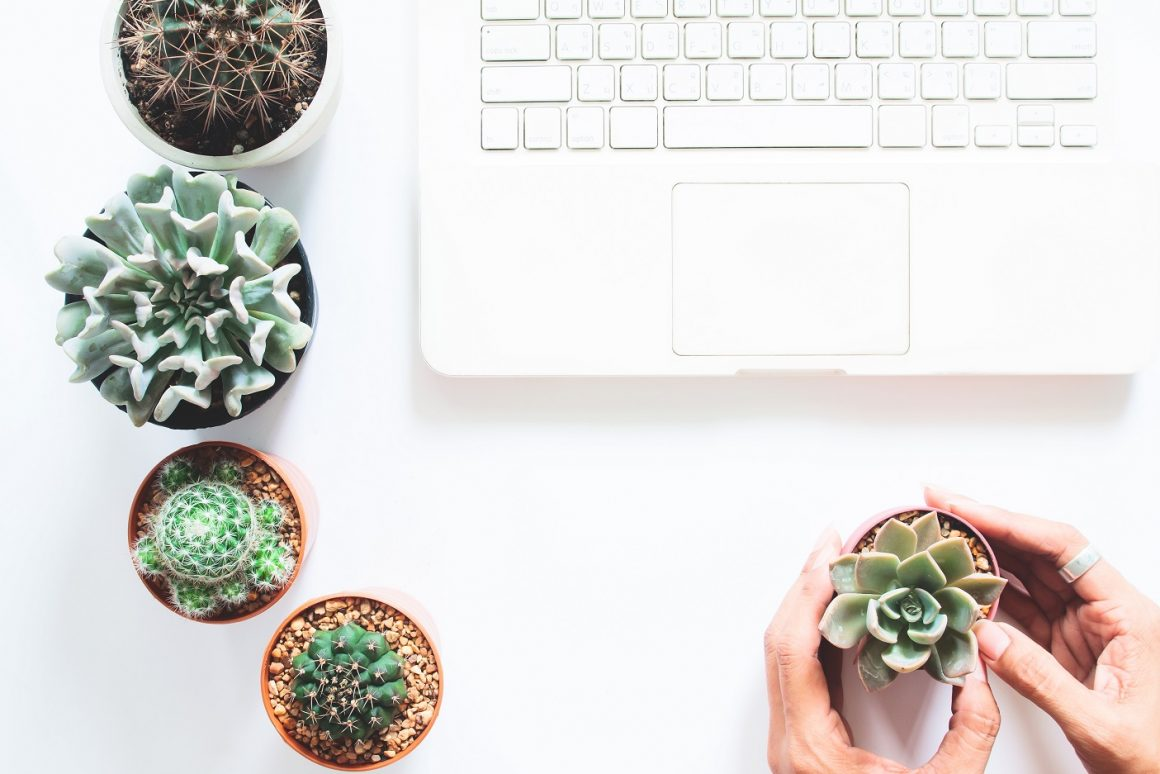 OVERHEAD VIEW OF LAPTOP COMPUTER ON WHITE DESK WITH CACTUS AND SUCCULENT AND WOMAN HAND HOLDING ONE