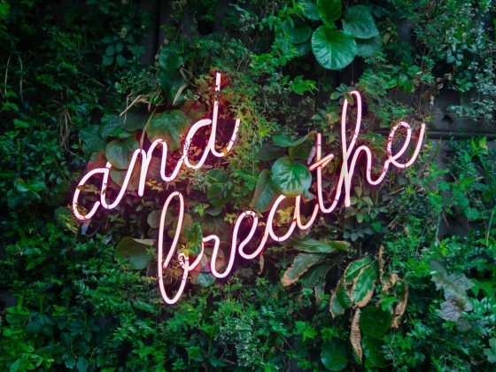 """Neon sign among leaves, reading """"and breathe""""."""